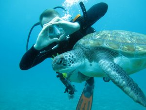 tenerife buceo con tortugas